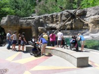 Trip to the zoo with the Avril Lavigne Rockstar Club at Easter Seals in Ohio!
