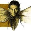 Franz Oler avatar