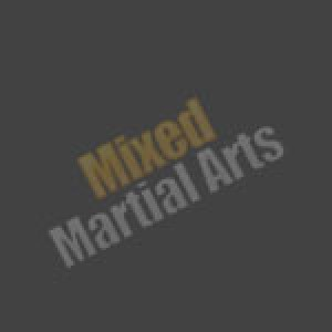 martialartsbelts40 avatar