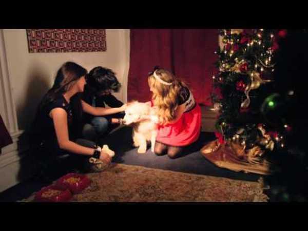 Santa Paws - Deck The Halls