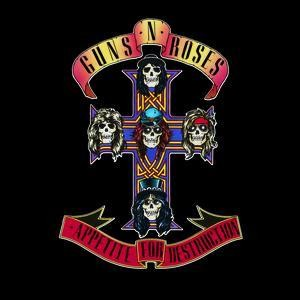 Appetite for Destruction - Cover Art