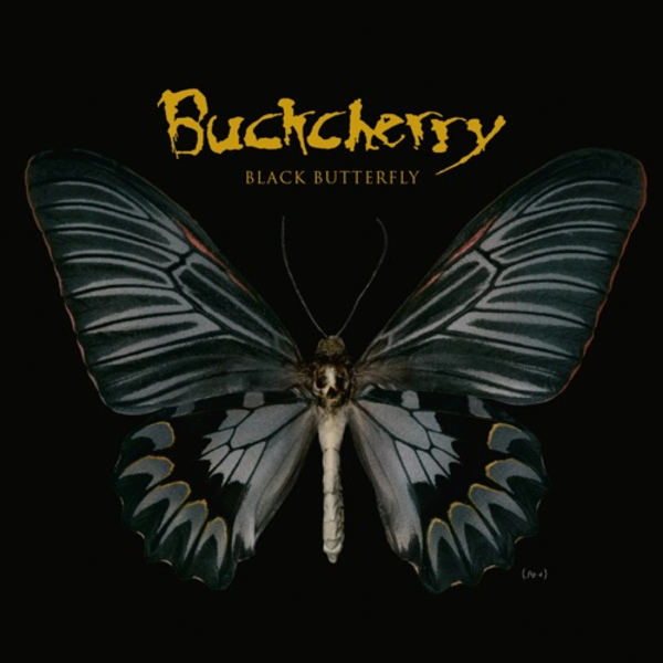 Black Butterfly - Cover Art