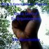 tblacc11 avatar