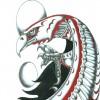 comanche avatar