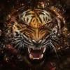 EazyBlazin avatar