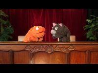 Box Seats - Catnip and Catnap