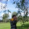 cigi0731 avatar