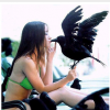 Belle_Deviante avatar