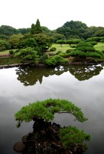 Japan 2010