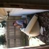 Crazy9mm78 avatar