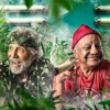 Chong Green avatar