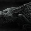Damien6 avatar