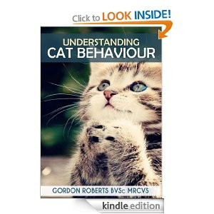 Cat Behaviour avatar