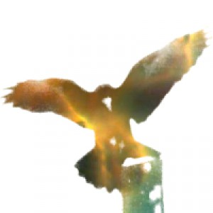 Andrus avatar
