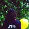 Di LP avatar