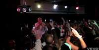 LIVE Music Videos