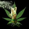 PinkLady420 avatar