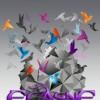 ecasnegfx avatar