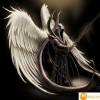 rocknmetaldude avatar