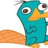 Unnessecaryenglishguy39 avatar