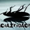 crazyroach1988 avatar