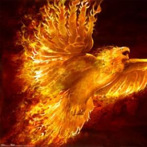 Phoenix 4X avatar