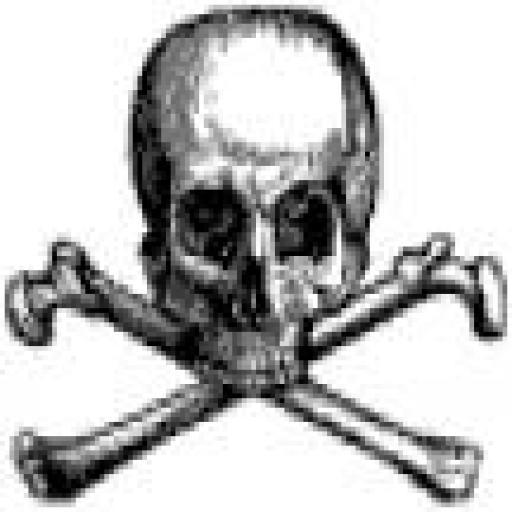 stefarocksyourworld avatar