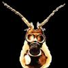 RTFM avatar