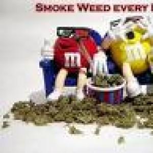 Weed Rocks avatar