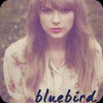 bluebird avatar