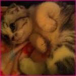 Emily1013 avatar
