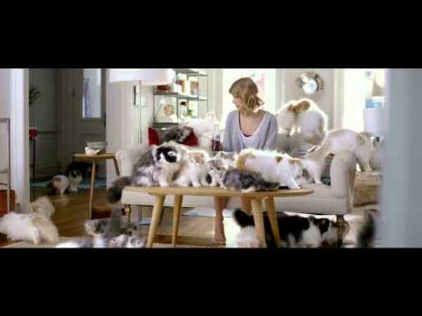 Diet Coke - Taylor Swift Kittens