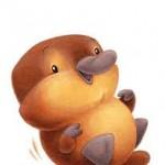 Pumpkinplatypus26 avatar