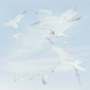 the1989seagull avatar