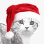 Hannahh avatar