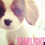 SkyFullOfStars13 avatar