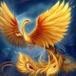 GrammyboyXD avatar